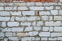 Brick, Structure, Wall, Cement, Erect, Partition (thumbnail)