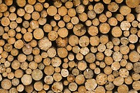 Close_Up, Firewood, Heap, Large Group Of Objects
