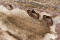 Animal Skin, Fur, Day, Close_Up, Animal Hair
