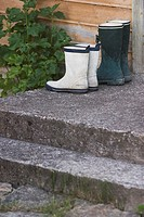 Day, Gumboots, Exterior, Arranged