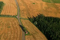 Farm, farm land, cultivated, land, field, farm field (thumbnail)