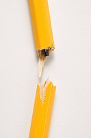 Wooden yellow pencil broken with lead exposed against white background (thumbnail)