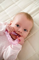 infant biting toy