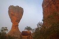Cup shaped rock in a field, A Taca, Vila Velha State Park, Ponta Grossa, Parana State, Brazil