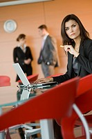 Businesswoman at meeting with laptop (thumbnail)