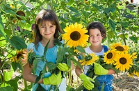 Girls and sunflowers