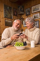 Senior couple toasting with red wine (thumbnail)