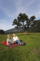 Austria, Karwendel, Ahornboden, Senior couple sitting in meadow with map