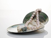 Pearl necklet and black pearl on shell