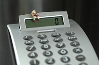 Figurine Senior couple sitting on calculator