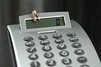 Figurine Senior couple sitting on calculator