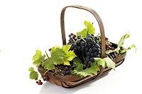 Bunch of grapes in basket, elevated view