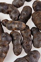 Truffle de Chine blue_violet potatoes, elevated view