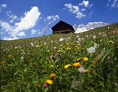 alps, alpine, mountain, mountains, landscape, scen