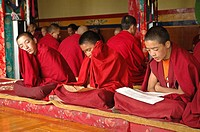 Novice monks chanting during the morning prayer Tiksey, Ladakh, India