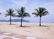 Gonzarca coast, Santos, Brazil, Latin America, November