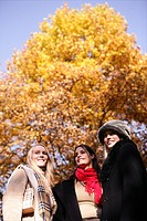 women, beauty, autumn, joy, park, tree, young adul