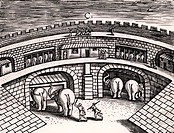 Roman army stables with elephants at ground level, with horses on the upper level. From Poliorceticon by Justus Lipsius Antwerp, 1605. Copperplate eng...