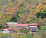 Hot spring of Nuruyu, Sato inn, Autumn, Kurihara, Miyagi, Japan