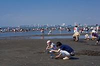 Tokyo Bay, Sanbanze, tideland, Clam digging, Funabashi beach park, Funabashi, Chiba, Kanto, Japan,