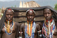 Young girls from the Arbore tribe Omovalley Ethiopia Africa