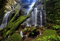 Scenic shot of a spectacular Costa Rica tropical waterfall surrounded by trees and rocks covered in green moss Rincon de la Vieja