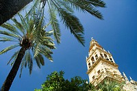 The campanile of the Mezquita Cordoba Mosque, Andalucia, Spain