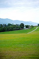 Green field with trees and mountains in background