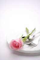 Rose on table setting