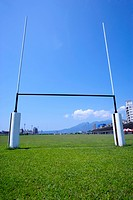 Goal post on grass