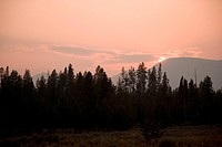 Yellowstone National Park at sunset, United States of America