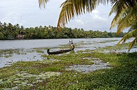 COUNTRY BOAT OF KUTTANAD, ALAPPUZHA