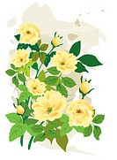 Illustration and painting of beautiful yellow flowers with green leaves