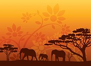 Illustration and painting of three elephants and trees with floral pattern in background