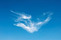 Cirrus cloud. Cirrus clouds are elongated tufted clouds, also known as mare´s tails, that are found at altitudes over 5000 metres. They consist of tin...
