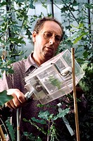 Carbon cycle research. Researcher measuring the release of carbon dioxide from oak leaves. This work is being carried out as part of a study of the ro...