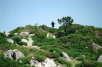 Man landscape