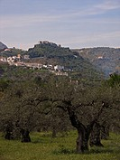 View at Monda, Costa del Sol, Andalucia, Spain