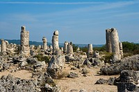 Bulgaria _ North_east Region _ the Dobrogea region _ Pobiti Kamani Stone Forest planted or petrified