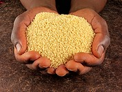 Man´s Hands Holding Couscous