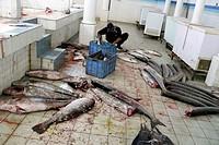 mercato del pesce, nizwa, oman, asia