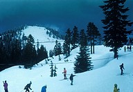 People skiing at a ski resort