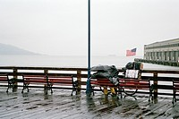 A person sitting on a bench in the rain, overlooking San Francisco Bay, USA