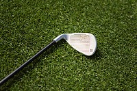 A golf club on grass