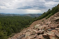 Rock slide, Chiricahua Mountains, Arizona, USA