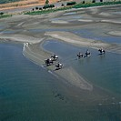 Aerial photograph of a group of people riding their horses in the northern shore of Sea of Galilee