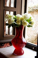 white roses in red vase on kitchen windowsill in Ital