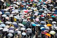 Umbrellas, Shibuya district, Tokyo, Japan (Spring 2009)