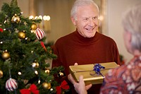 Couple with gift near Christmas tree
