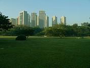 Landscape, Villa_Lobos Park, Alto de Pinheiros, Sã